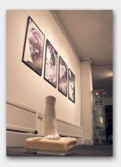 Sarah Misselbrook exhibition 3
